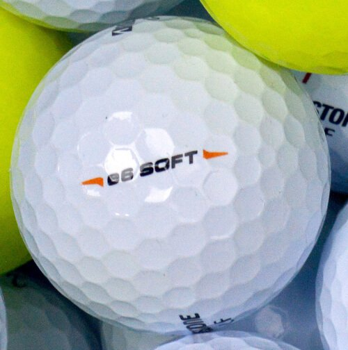 Bridgestone E6 Soft Lake Ball